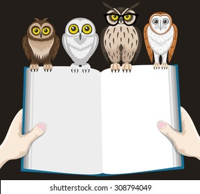 Vector illustration. Book and owls