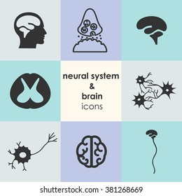 vector illustration / brain and neural system icons