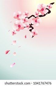 Vector illustration of a branch of cherry blossoms on pink and blue background, for postcards, flyers, greetings