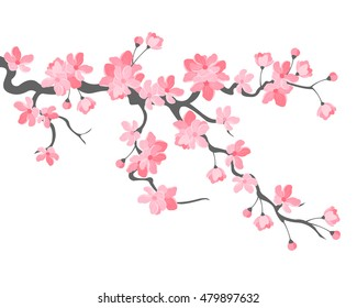 фотообои Vector illustration. Branch of Japanese cherry blossoms with beautiful flowers.Sakura. White background.