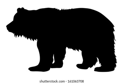 Vector illustration of brown bear silhouette