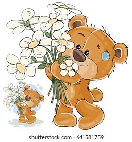 Vector illustration of a brown teddy bear holding a bouquet of flowers in his paws. Print, template, design element for greeting cards