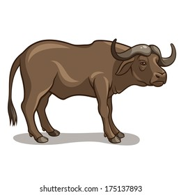 Vector illustration of a buffalo isolated on a white background