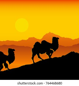 Vector illustration of camels caravan going through the desert  in evening time.