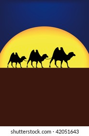 vector illustration of camels on desert in night