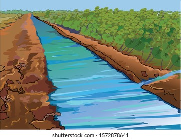 Vector Illustration of canal water irrigation on field an India
