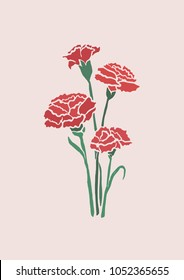 Vector Illustration. Carnation flowers illustration with color.