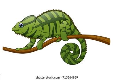 Vector illustration of Cartoon chameleon on a branch