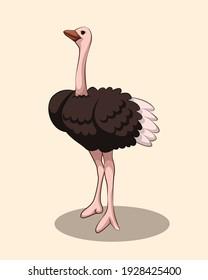 Vector illustration cartoon of a cute Ostrich.
