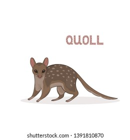 Vector illustration, a cartoon cute quoll, isolated on a white background. Animal alphabet.