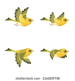Vector illustration of cartoon flying European Siskin (female) sprite sheet isolated on white background. Can be used for GIF animation