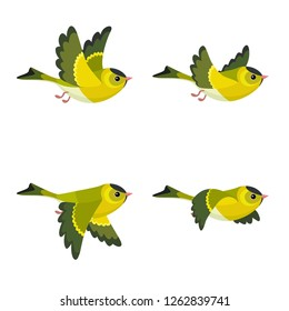 Vector illustration of cartoon flying European Siskin (male) sprite sheet isolated on white background. Can be used for GIF animation