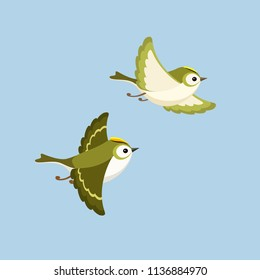 Vector illustration of cartoon flying Goldcrest pair, the smallest bird of Europe