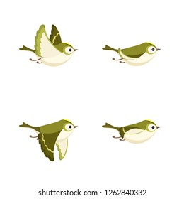Vector illustration of cartoon flying Goldcrest (female) sprite sheet isolated on white background. Can be used for GIF animation