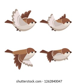 Vector illustration of cartoon flying House Sparrow (female) sprite sheet isolated on white background. Can be used for GIF animation