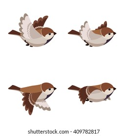 Vector illustration of cartoon flying sparrow animation sprite isolated on white background