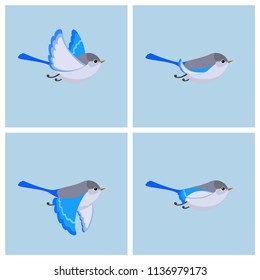 Vector illustration of cartoon flying Splendid Fairy Wren (female) sprite sheet. Can be used for GIF animation