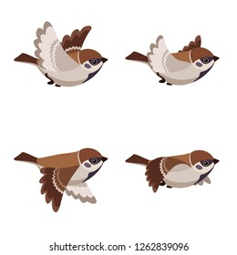 Vector illustration of cartoon flying Tree Sparrow sprite sheet isolated on white background. Can be used for GIF animation