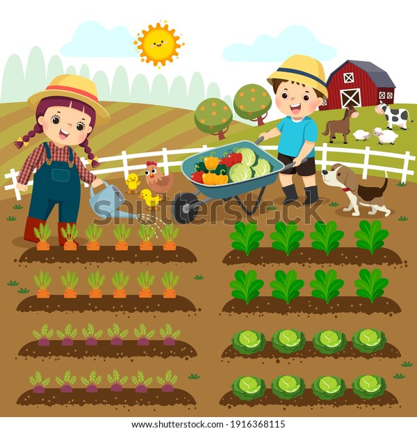 Vector illustration cartoon of girl watering vegetable plants and boy pushing the wheelbarrow of vegetables on the farm.