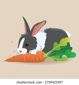 vector illustration of Cartoon happy rabbit eating carrot. rabbit eating a carrot with space for copy.
