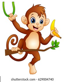 Vector illustration of Cartoon monkey on a branch tree and holding banana