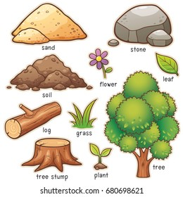 Vector illustration of Cartoon nature element vocabulary