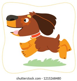 Vector illustration. Cartoon running dog: spaniel. Isolated on white background.