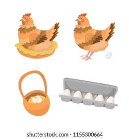 Vector illustration in cartoon style with hen sitting on a nest? hen standing with an egg, farm basket and opened supermarket box package with eggs