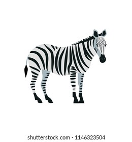 Vector illustration. Cartoon style icon of zebra. Cute character for different design.