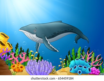 Vector illustration of Cartoon whale swimming in the sea