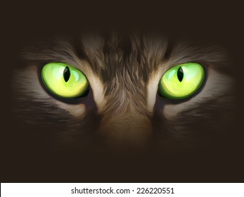 Vector illustration. Cat eyes look at you out of the darkness.