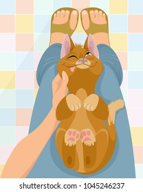 Vector illustration of cat on the lap of mistress