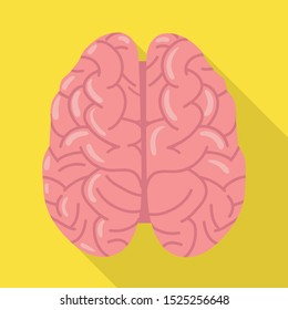 Vector illustration of cerebrum and hemisphere symbol. Web element of cerebrum and gyri vector icon for stock.
