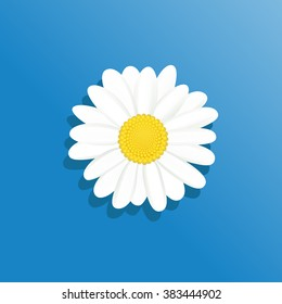 Vector Illustration chamomile flowers. Beautiful white daisy flower isolated. For greeting cards and invitations of wedding, birthday, mother's day and other seasonal holiday
