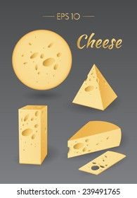 Vector illustration. Cheese. Milk product. Set of different pieces of cheese. Food collection