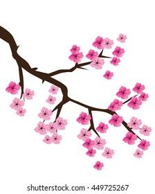 Фотообои vector illustration of a cherry blossom branch
