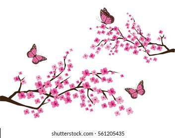 vector illustration of cherry blossom branch