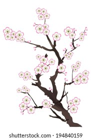 фотообои vector illustration of cherry blossom - pink