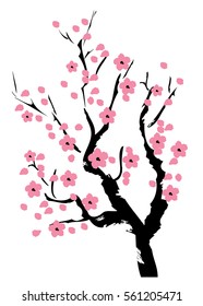 vector illustration of cherry blossom tree