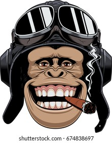 Vector illustration, a chimpanzees head in a pilot's helmet, smokes a cigar and smiles.