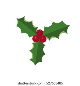 Vector illustration of Christmas symbol - holly. Leaves with berries isolated on white background. Great for Christmas and new year design