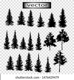 Vector illustration of Christmas Tree silhouettes of coniferous trees, forest of cedar, pine and spruce, isolated on transparent background