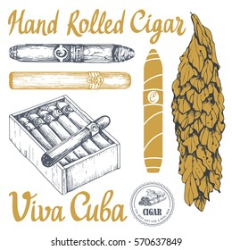 Vector illustration with classical smoking set. Bunch of tobacco box, hand rolled cigars, leaf in sketch style. Best cuban quality.