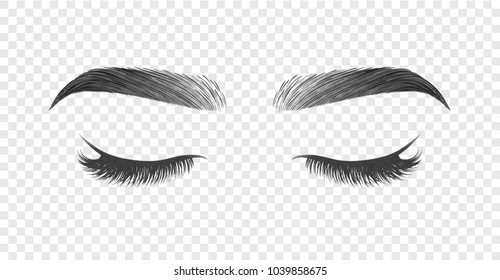 Vector illustration of closed eye with black long false eyelashes and eyebrows isolated on transparent background