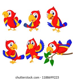 vector illustration of the collection of beautiful red parrots with the different posing