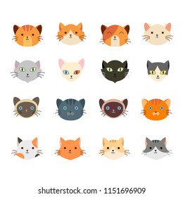 Vector illustration of collection cute cat head with many face