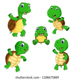 vector illustration of the collection of the tortoise with different posing and size
