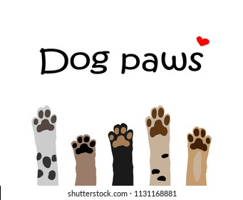 vector illustration of colorful dog paws on white background. Brochure, flyer, postcard.