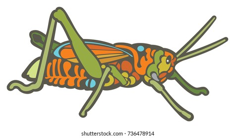 Vector Illustration of a Colorful Grasshopper