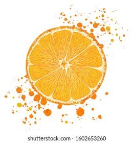 Vector illustration of colorful mandarin, tangerine, orange. Hand drawn. Isolated on white background. Paint splash splatters